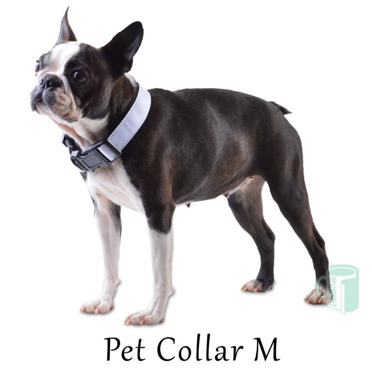 pet_collar_medium